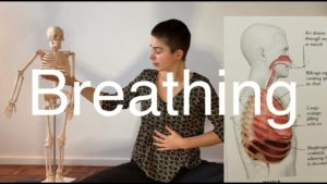 Yoga #16 : Lungs and breath